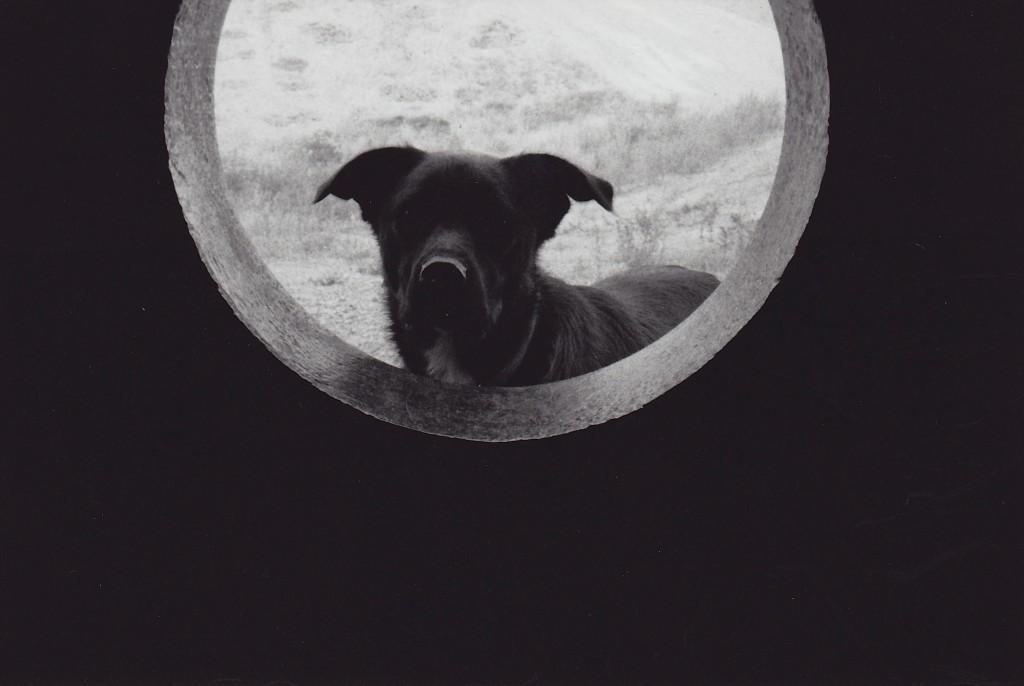 Oko in the Portal. Photo: Jeremiah Moore